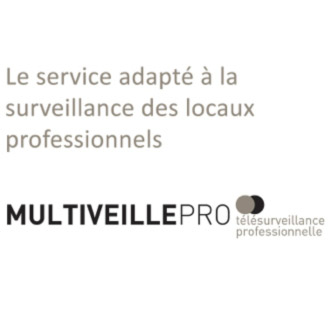 multiveillepro AVA SECURITE